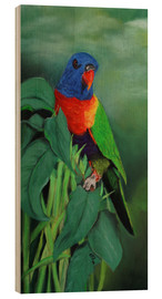 Wood  colorful Rainbow lorikeet - Monica Schwarz