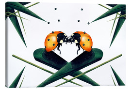 Canvas print  Bugs in Love - Romina Lutz
