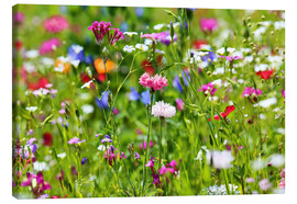 Canvas  Flower meadow  - fotoping