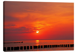 Canvas  Evening at Baltic Sea - wiw
