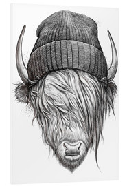 Foam board print  Bull in a hat - Nikita Korenkov