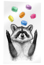 Acrylic print  Raccoon and cookies - Nikita Korenkov
