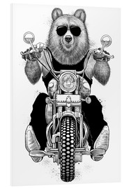 Foam board print  Carefree bear - Nikita Korenkov