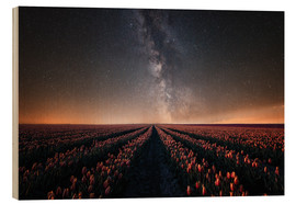 Wood print  Tulip field and Milky Way - Oliver Henze