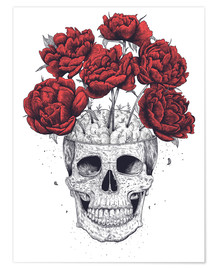 Premium poster Skull with peonies