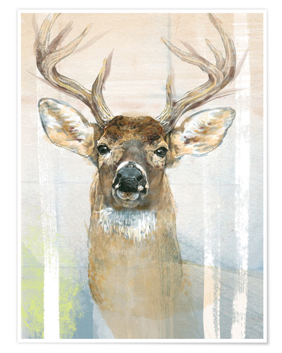 Premium poster Whitetailed Deer Surrounded By Birches