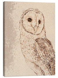 Canvas  Endearing Barn Owl - Ashley Verkamp