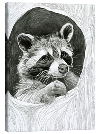 Canvas print  Raccoon In A Hollow Tree Sketch - Ashley Verkamp