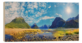 Wood print  Milford Sound New Zealand - Michael Rucker