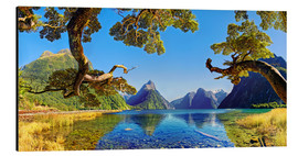 Aluminium print  Look in the Milford Sound New Zealand - Michael Rucker
