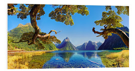 Foam board print  Look in the Milford Sound New Zealand - Michael Rucker