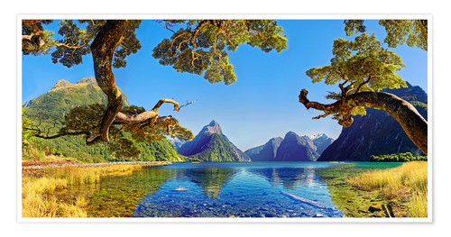 Premium poster Look in the Milford Sound New Zealand
