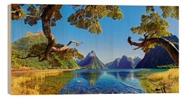 Wood print  Look in the Milford Sound New Zealand - Michael Rucker