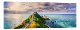 Acrylic print  Nugget Point Panorama New Zealand - Michael Rucker