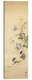 Canvas print  Sparrows and morning glory - Seshiko