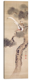 Canvas print  Long tailed birds on a pine tree - Japanese School