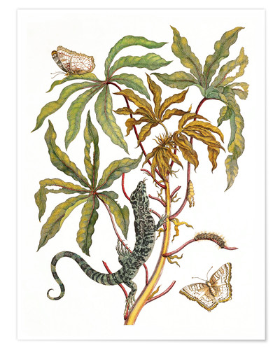 Premium poster cassava with crocodile and butterfly metamorphosis