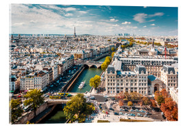 Acrylic print  View over Paris, from Notre-Dame - Sascha Kilmer