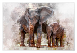 Poster  elephants - Peter Roder