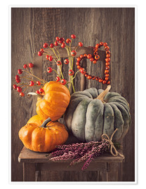 Premium poster  Still life with the pumpkins - Elena Schweitzer