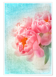 Poster Peony flowers