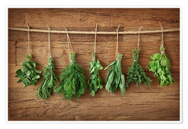Poster Herbs