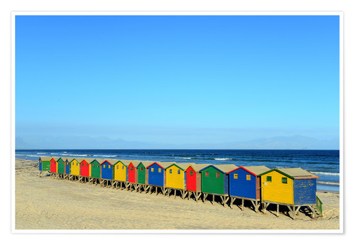 Premium poster Colorful beach huts on the beach of Muizenberg