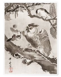 Premium poster Owl Mocked by Small Birds