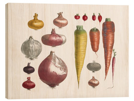 Wood  Various Vegetables, including onions and carrots - E. Champin and Mlle. Coutance