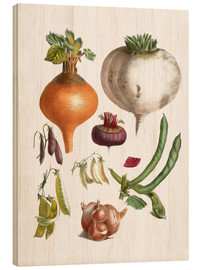 Wood print  beans peas, turnips, swede, beetroot and onions - E. Champin and Mlle. Coutance