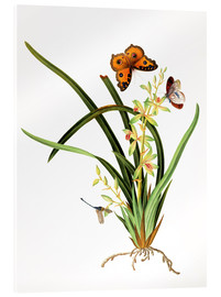 Acrylic glass  Butterflies and a dragonfly on a plant