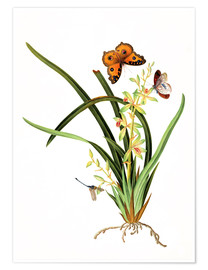 Premium poster Butterflies and a dragonfly on a plant