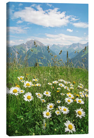 Canvas print  Mountains landscape in Vorarlberg, Austria - Elena Schweitzer
