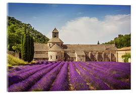Acrylic print  Senanque Abbey with lavender fields - Elena Schweitzer