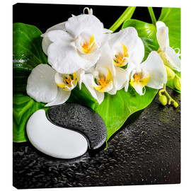 Canvas  Spa arrangement with white orchid