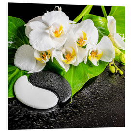 Forex  Spa arrangement with white orchid