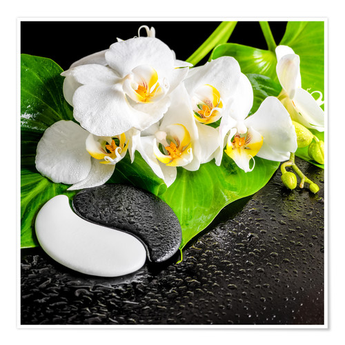 Premium poster Spa arrangement with white orchid