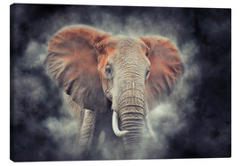 Canvas print  Elephants in the national park of Kenya