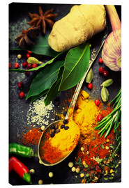 Canvas print  Colorful spices