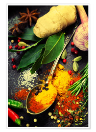 Premium poster Colorful spices