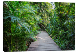 Canvas print  jungle trail