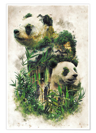 Premium poster  The Giant Panda - Barrett Biggers