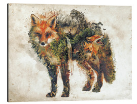Aluminium print  Surreal Fox Nature - Barrett Biggers