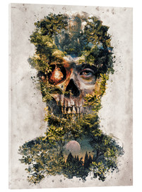 Acrylic print  The Forest of Death - Barrett Biggers