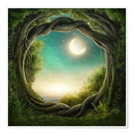 Premium poster Illustration of a magic forest