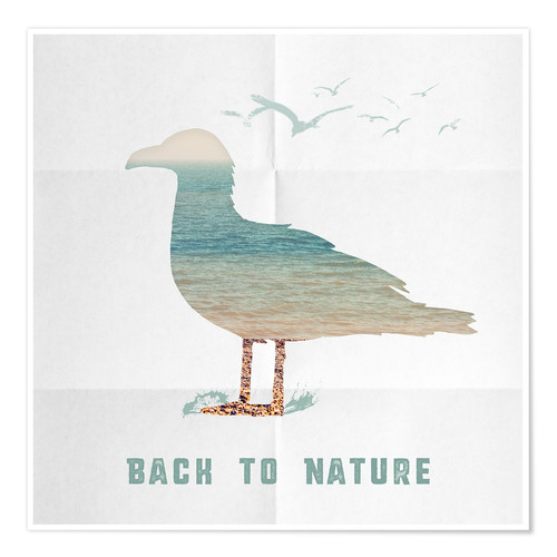 Poster Back to nature - seagull