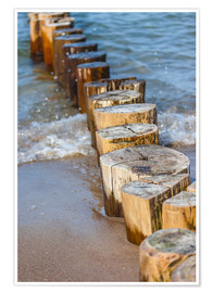 Premium poster Groynes at the German Baltic Sea