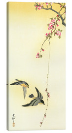 Canvas print  Starlings and Cherry Tree - Ohara Koson