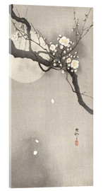 Acrylic print  Plum Blossoms at Night - Ohara Koson