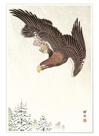 Premium poster  Eagle in Flight - Ohara Koson